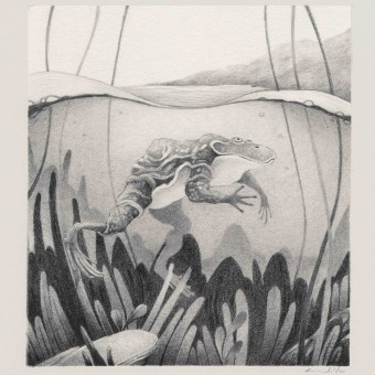 Mi Proyecto del curso: Técnicas de ilustración artística con grafito. Un projet de Illustration, Dessin au cra, on, Dessin et Illustration naturaliste de Ricardo Núñez Suarez - 02.02.2021