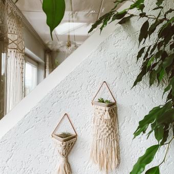 Mini Sukkulenten Wandhalterung. A Makramee und Blumen- und Pflanzendesign project by Lara Pertschy - 30.08.2021