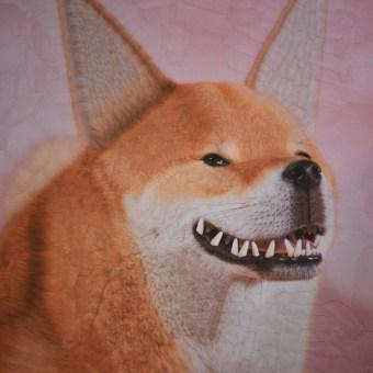 Cats and Dogs part 6. Un proyecto de Ilustración, Fotografía y Bellas Artes de Lola Dupre - 26.10.2021