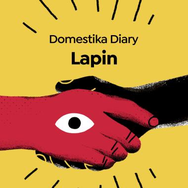 Diarios Domestika: Lapin