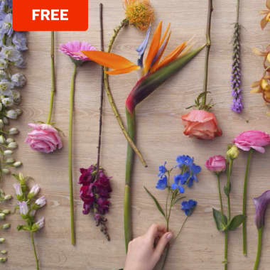 Free Download: A Color Theory Guide for Floral Compositions