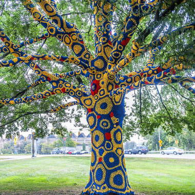 How Did Yarn Bombing Reach Your City?