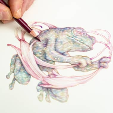 5 Online Courses to Learn Naturalist Illustration from Scratch