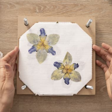 10 Online Courses For Getting Creative with Botany