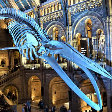 18 US and UK Museums You Can Visit Online in 2021