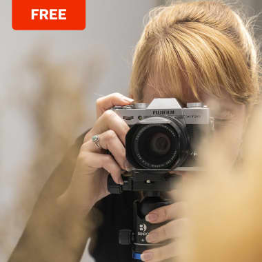 Free Guide: Basics of Composition in Photography