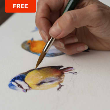 10 Free Online Watercolor Classes For improving Your Technique