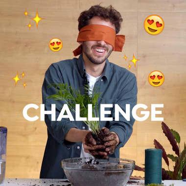 Challenge: ¿Se puede hacer una kokedama con los ojos cerrados?