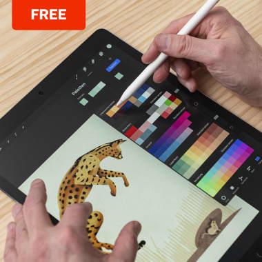 10 Free Online Digital Illustration Courses for Beginners