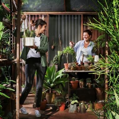 DIY : Apprenez à fabriquer du terreau pour vos succulentes !