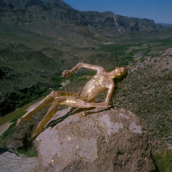 Synchrodogs: el paisaje es mi vestido