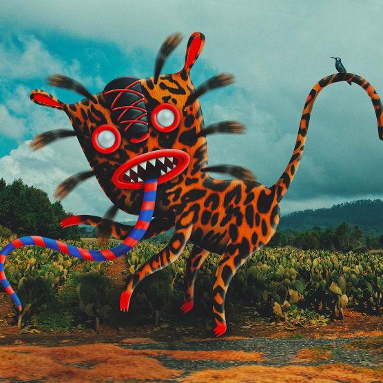 Fotografía, ilustración y relato: el arte de Niño Zapote