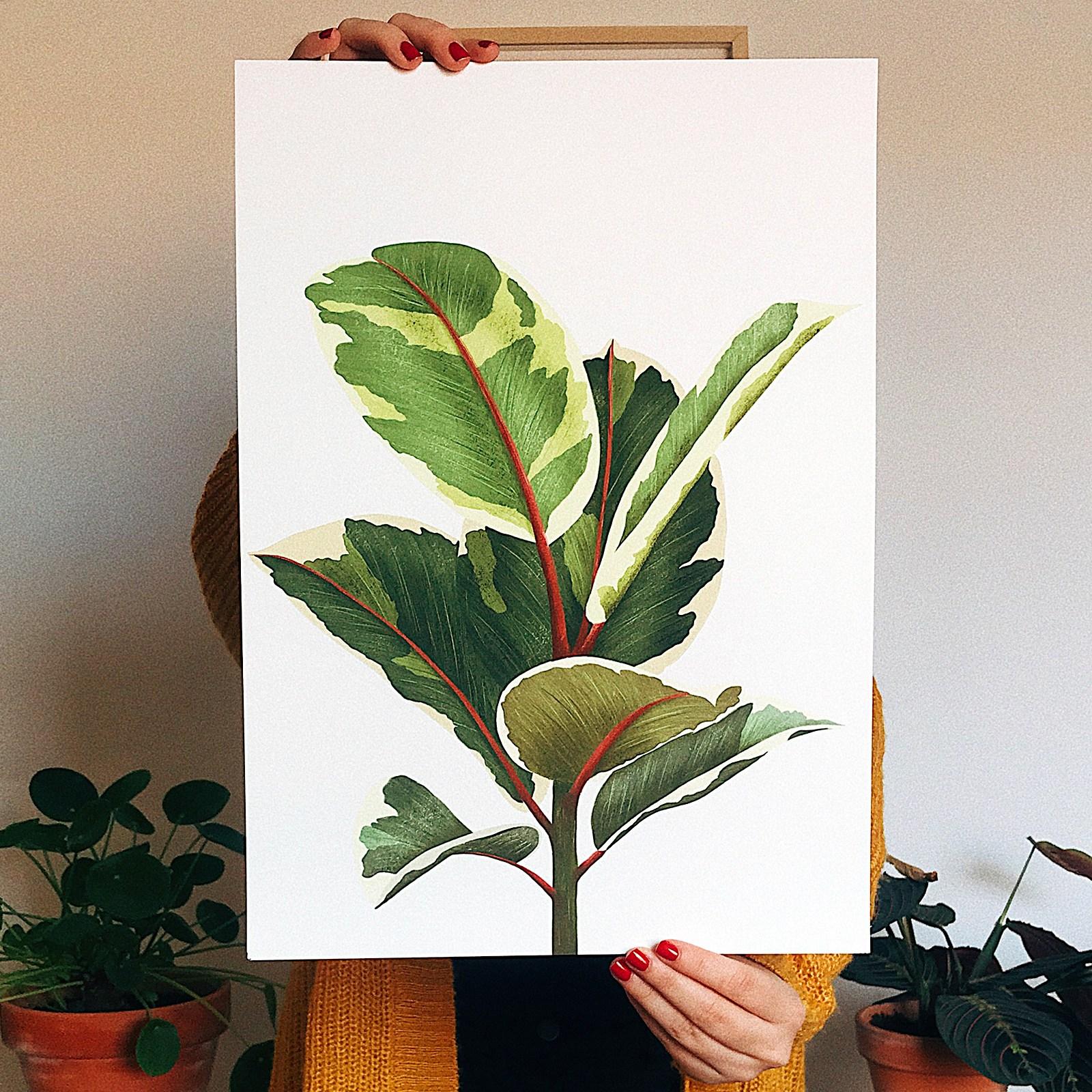 10 artistas e designers para inspirar suas aquarelas botânicas