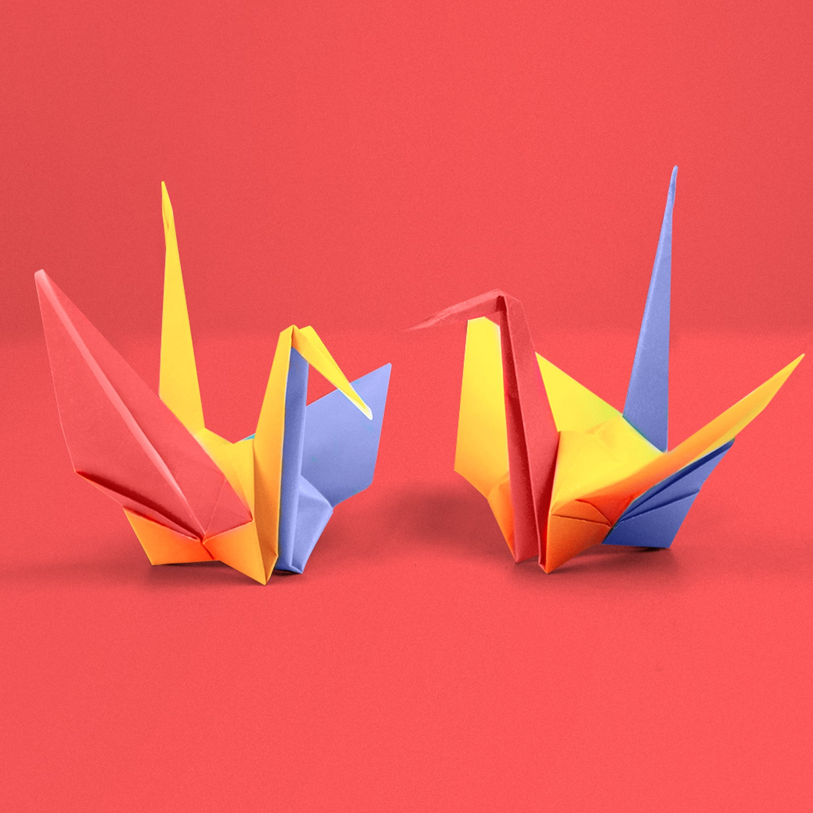 5 Interesting Facts About Origami