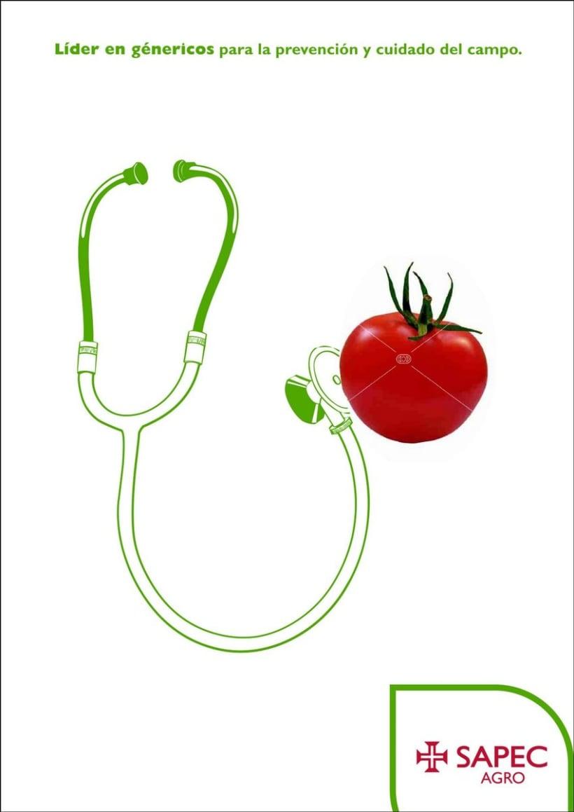 Sapec Agro Campaña 2