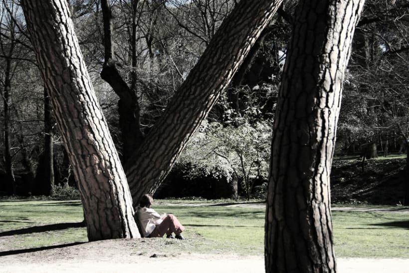 Parques y jardines 1