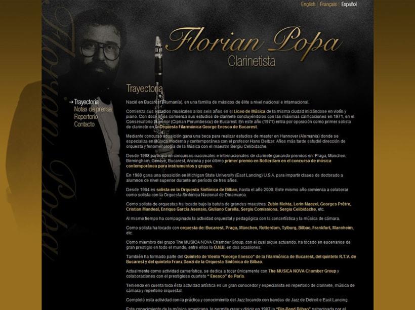 Florian Popa web 2