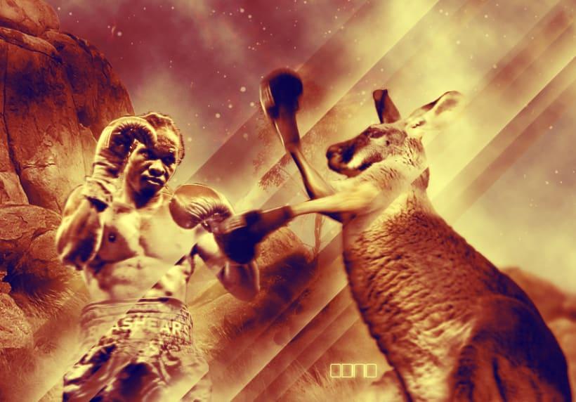 Boxing kangaroo 1