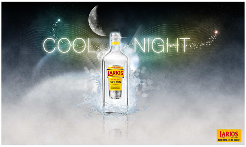 Larios Dry Gin 1