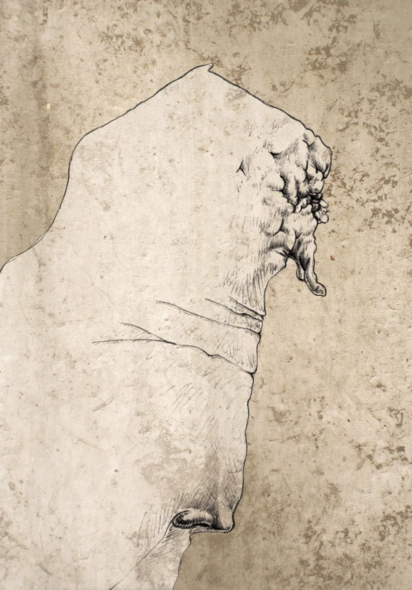 Ilustraciones. 8