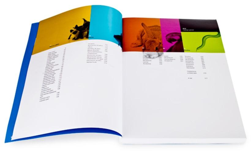 Dimac | Imagen de producto y packaging 5