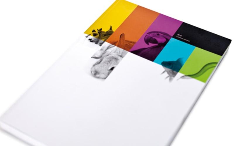 Dimac | Imagen de producto y packaging 4