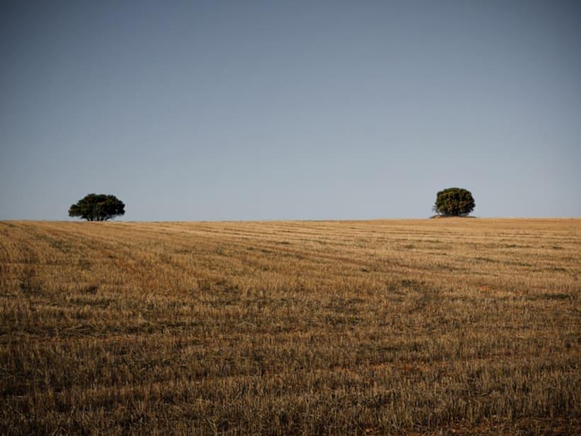 PHOTOSERIES 001 La Mancha 3