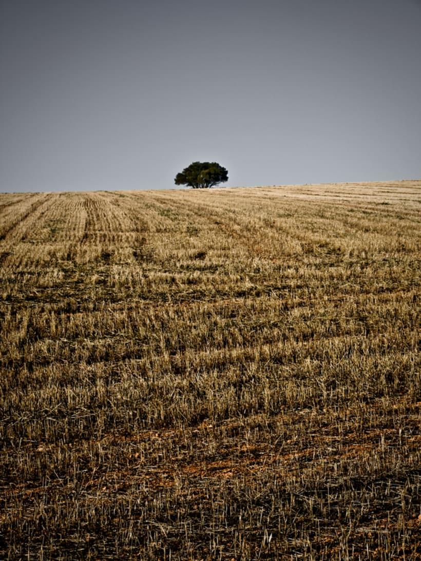 PHOTOSERIES 001 La Mancha 5