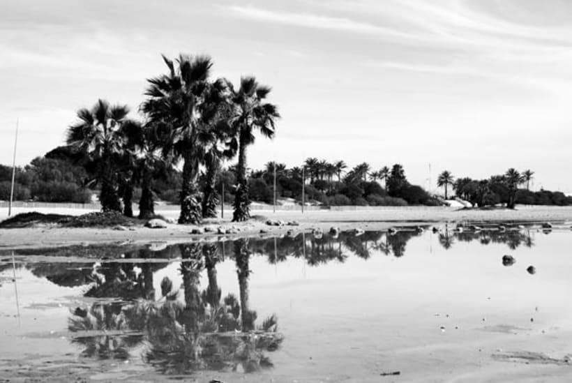 Día de playa 10