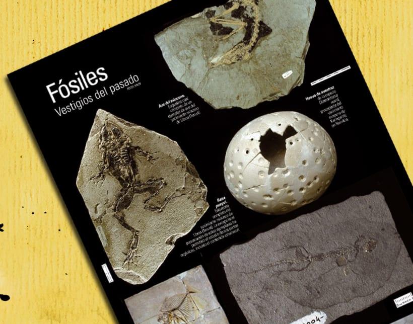 Revista 'Anfioxus' 4