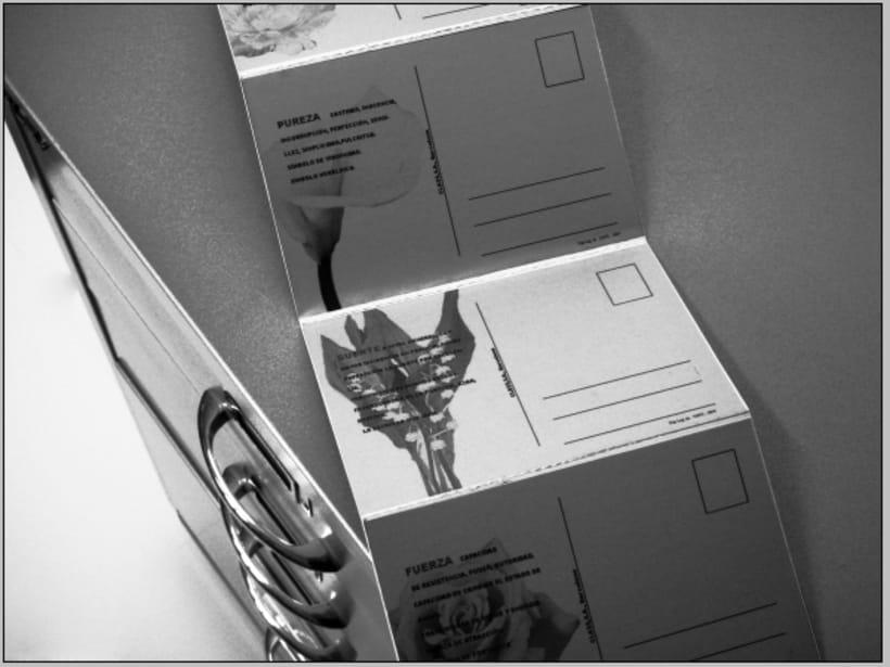 Postal free 1