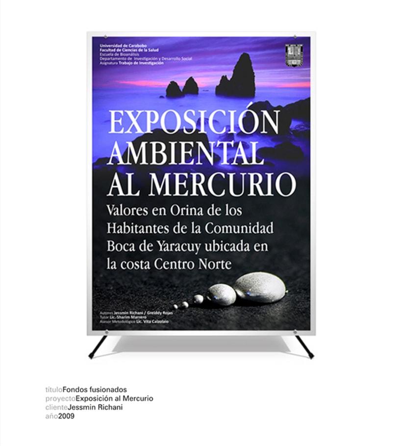 Exposición al Mercurio 1