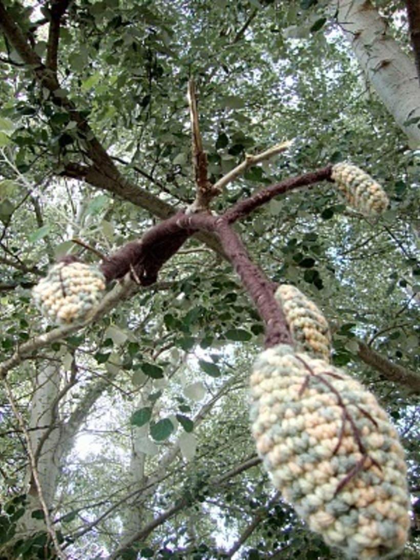 Hojas en el árbol 1