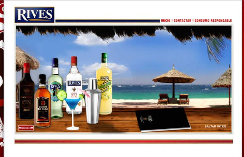 Página web Rives y diseños corporativos 9