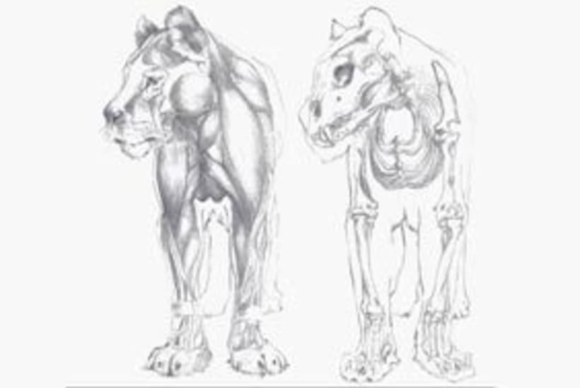 4 ilustraciones para un león. 4