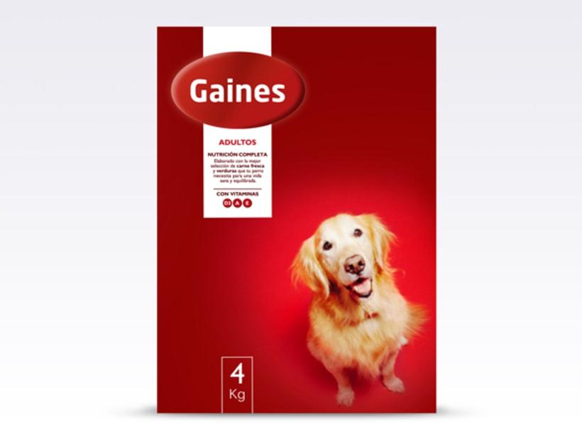 Gaines 2