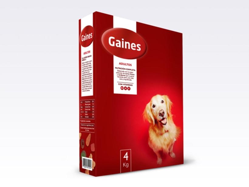 Gaines 4