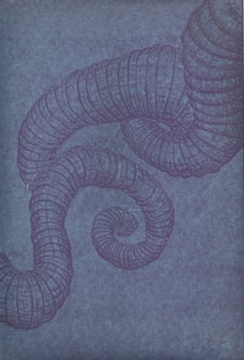 Grabados; xilografía y aguafuerte 11