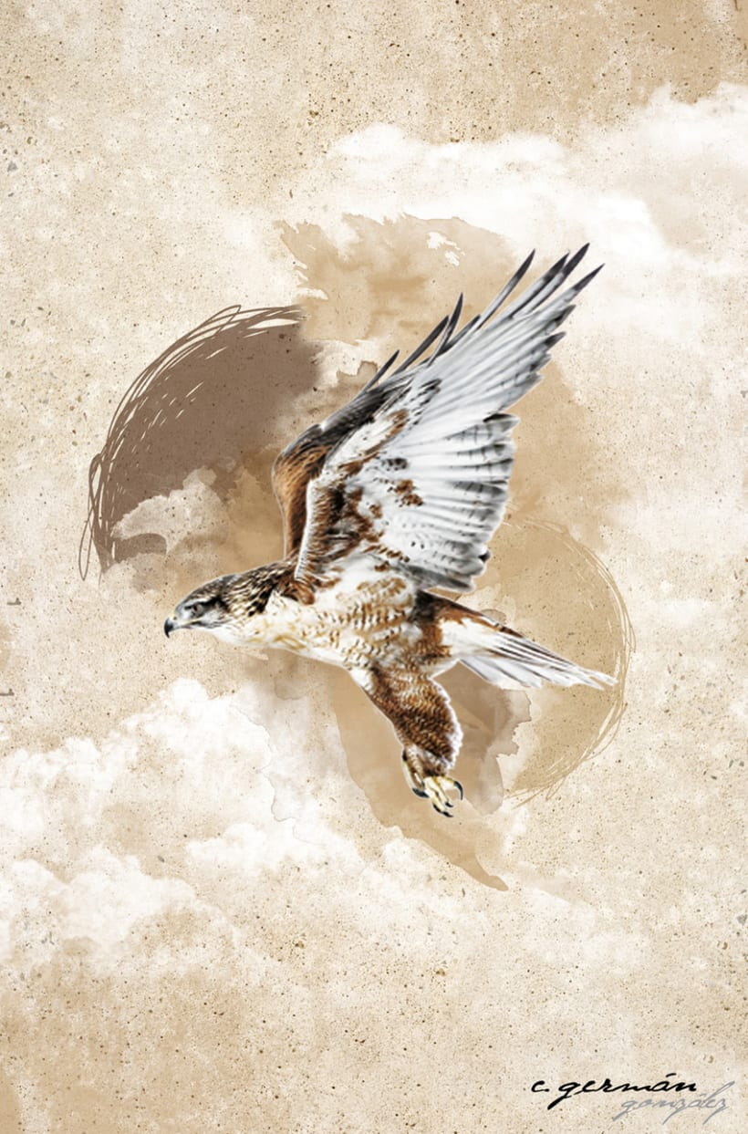 Free Bird 1