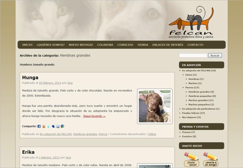 Felcan - Asociacion Protectora Felina y Canina 3