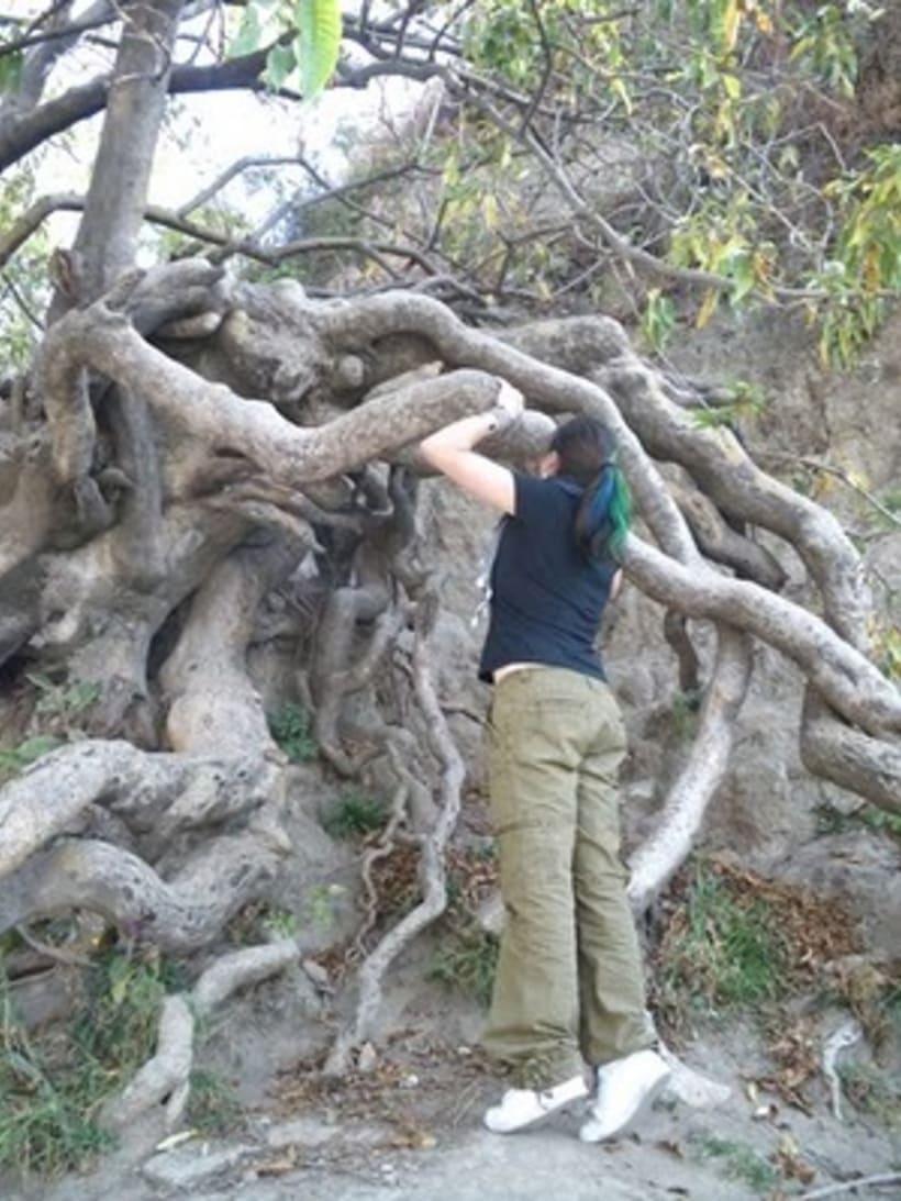 Besos de árbol 24