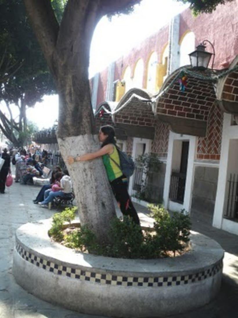 Besos de árbol 20