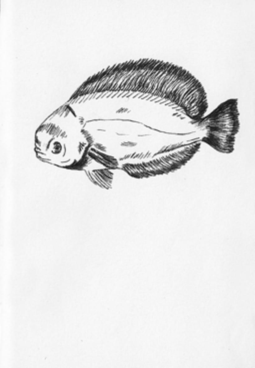 Fish & Chics 8
