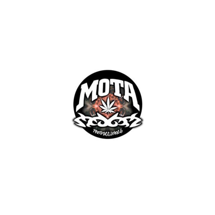 mota.com.ve 2