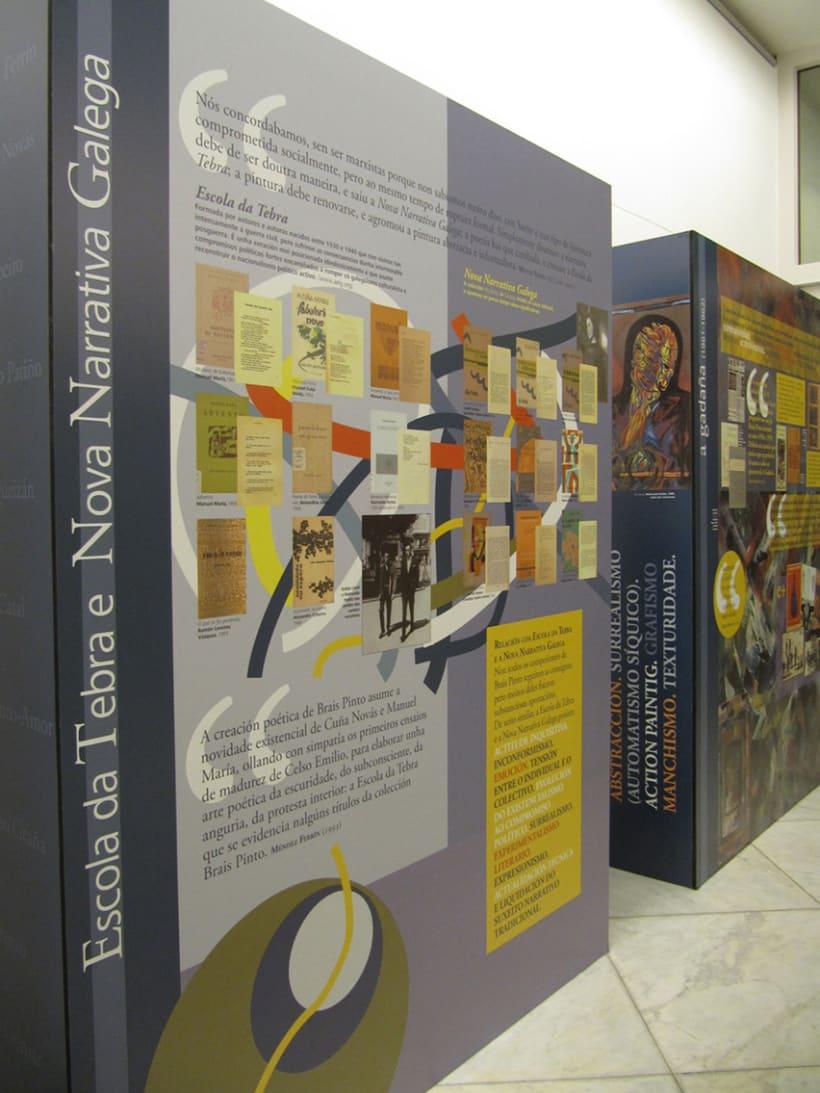 Exposición: Bráis Pinto 7