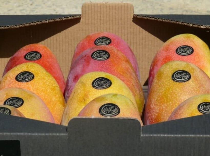 Mangos del Cielo 8