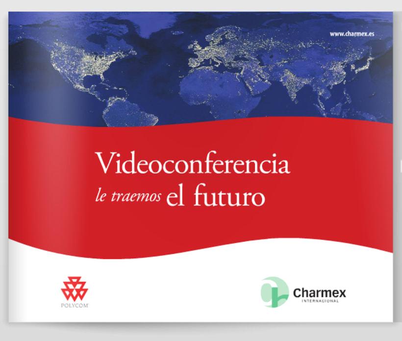 Videoconferencia 0
