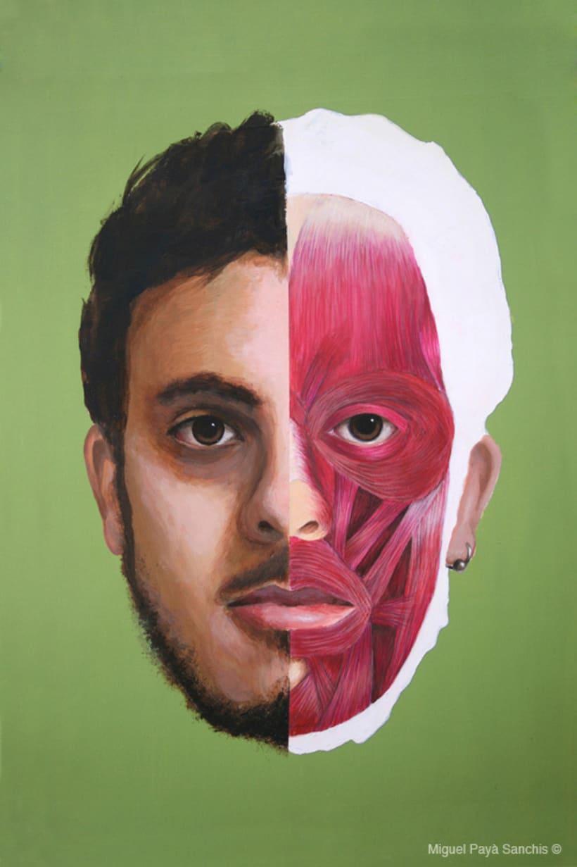 ilustración anatomía facial 2