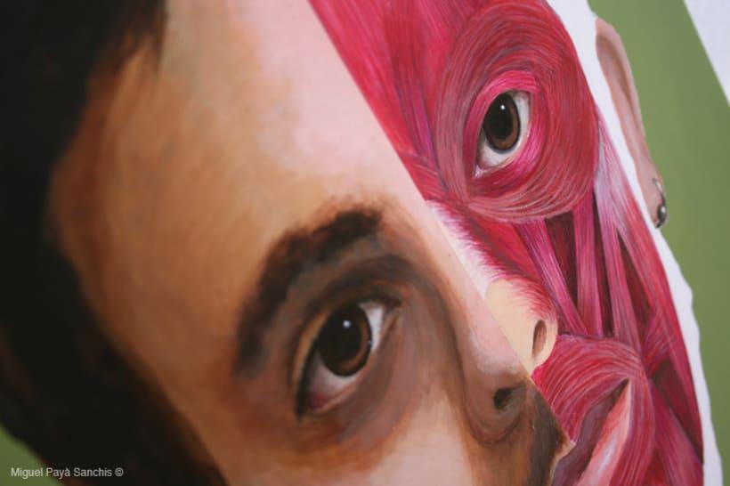 ilustración anatomía facial 3