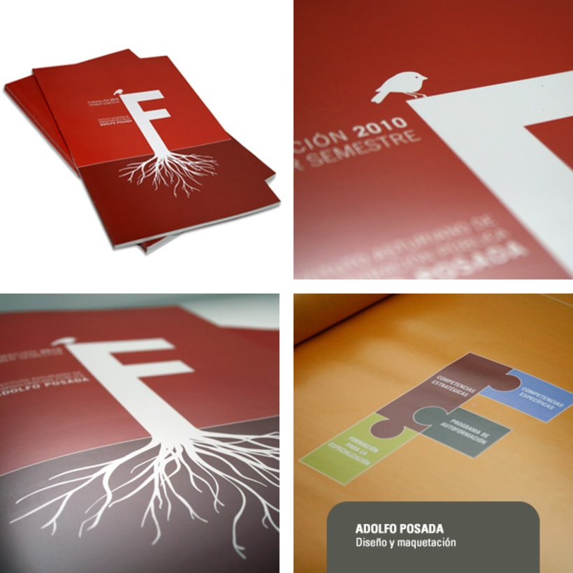 Revistas de formación Adolfo Posada 2010 1